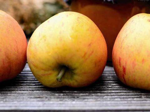 Appel-gemberjam zonder suiker